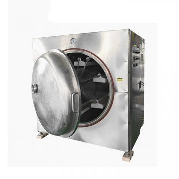 Food Dryer Stainless Steel Food Vegetable Fruit Dryer Machine Food Vacuum Drying Oven Fruit Microwave Dryer Machine