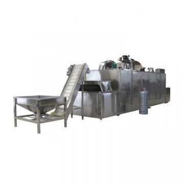 Industrial Fruit and Vegetable Shrimp Seafood Belt Belt Dryer